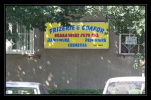scaraotzchi